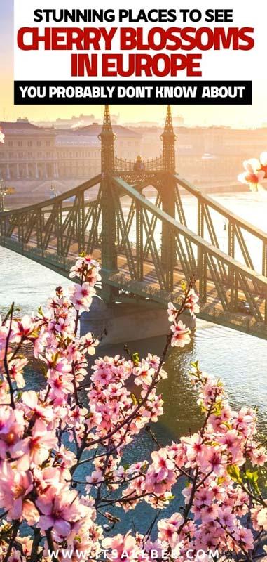 Sakura in Europe
