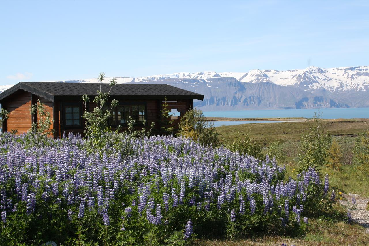 unusual places to stay in iceland - cool places to stay in iceland - coolest places to stay in iceland